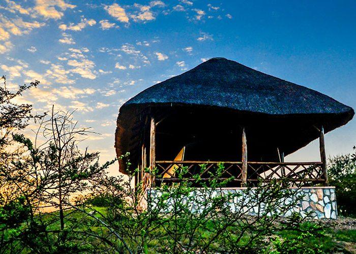 Twiga safari_1