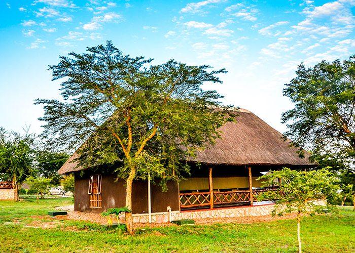 Twiga safari_10